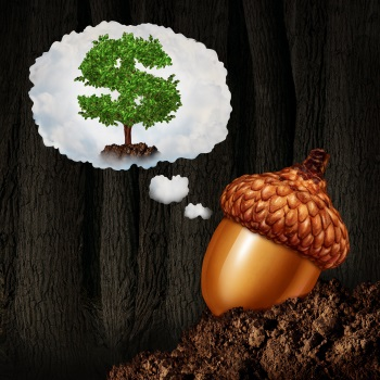 Grow your tree, why do you need a business plan?